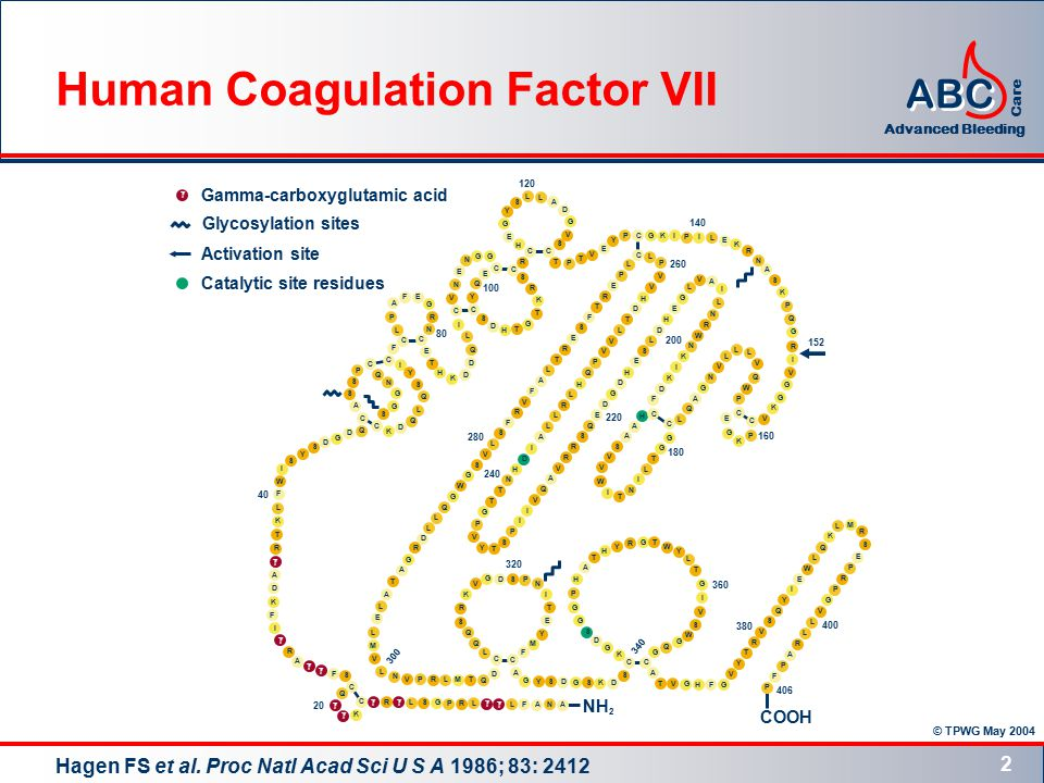 © TPWG May 2004 ABC Advanced Bleeding Care 2 Human Coagulation Factor VII Hagen FS et al.