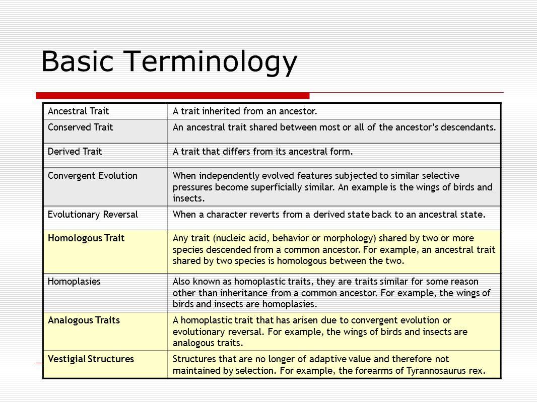 Basic Terminology Ancestral TraitA trait inherited from an ancestor.