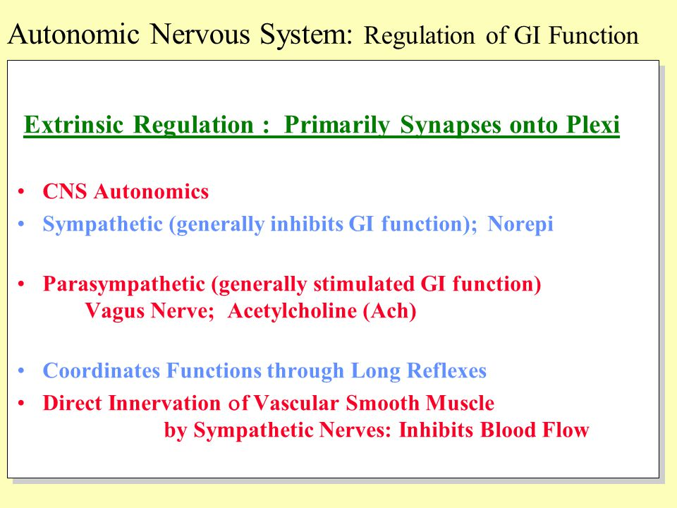 Extrinsic Regulation : Primarily Synapses onto Plexi CNS Autonomics Sympathetic (generally inhibits GI function); Norepi Parasympathetic (generally st