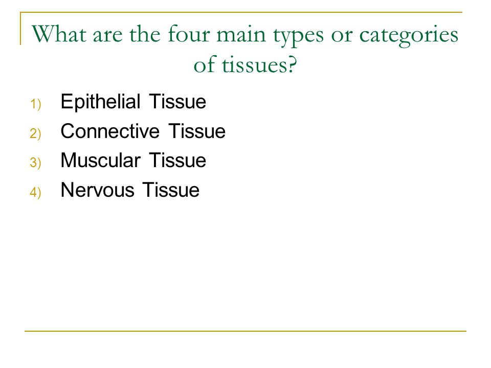 What are the four main types or categories of tissues.