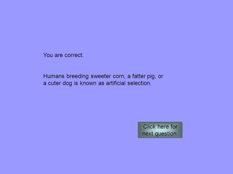 You are correct. Humans breeding sweeter corn, a fatter pig, or a cuter dog is known as artificial selection. Click here for next question.