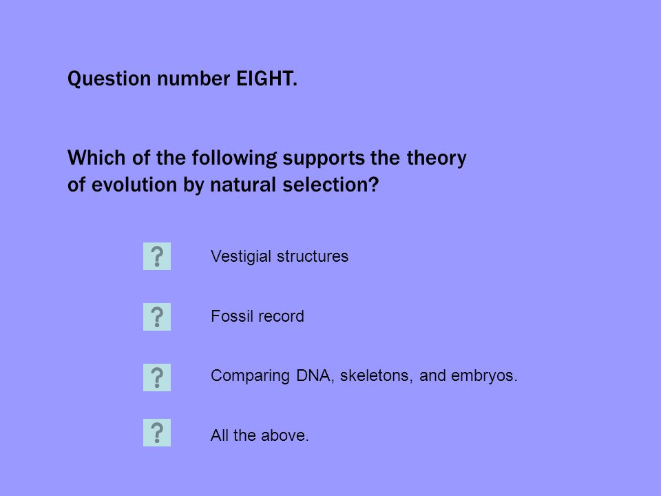 Question number EIGHT. Which of the following supports the theory of evolution by natural selection? Vestigial structures Fossil record Comparing DNA,