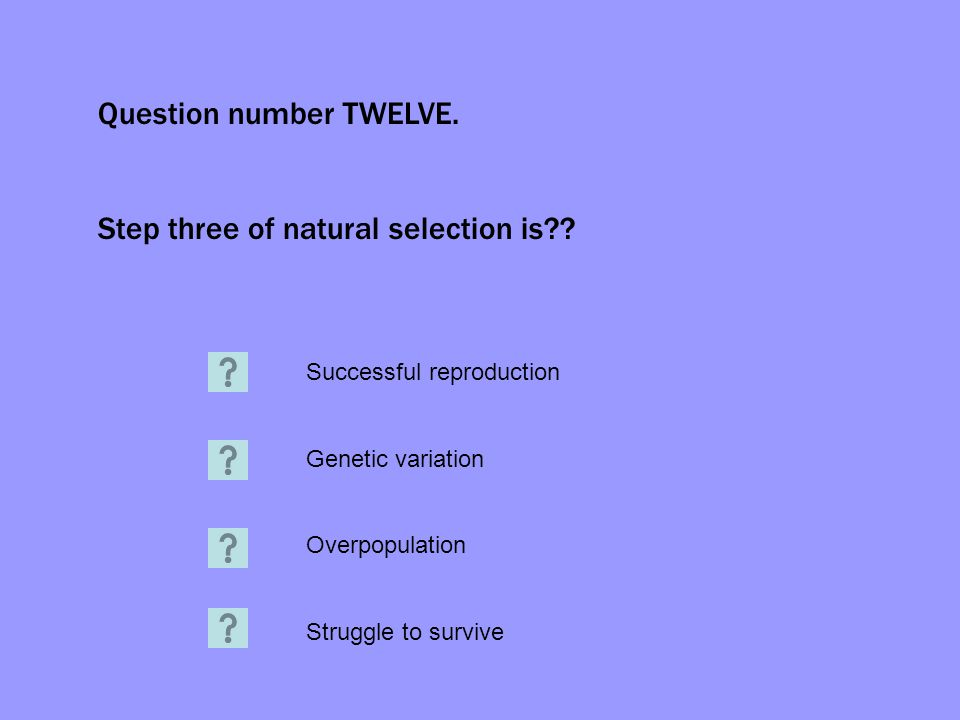 Question number TWELVE. Step three of natural selection is?? Successful reproduction Genetic variation Overpopulation Struggle to survive