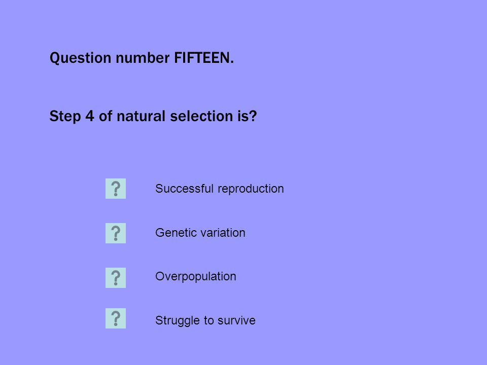 Question number FIFTEEN. Step 4 of natural selection is? Successful reproduction Genetic variation Overpopulation Struggle to survive