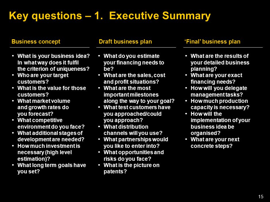 050301LNZXL756LTDE-P1 15 Key questions – 1. Executive Summary What is your business idea? In what way does it fulfil the criterion of uniqueness? Who
