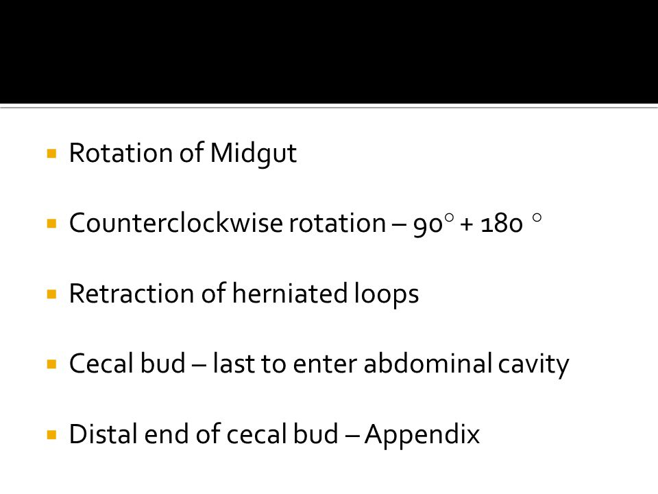  Rotation of Midgut  Counterclockwise rotation – 90 ° + 180 °  Retraction of herniated loops  Cecal bud – last to enter abdominal cavity  Distal