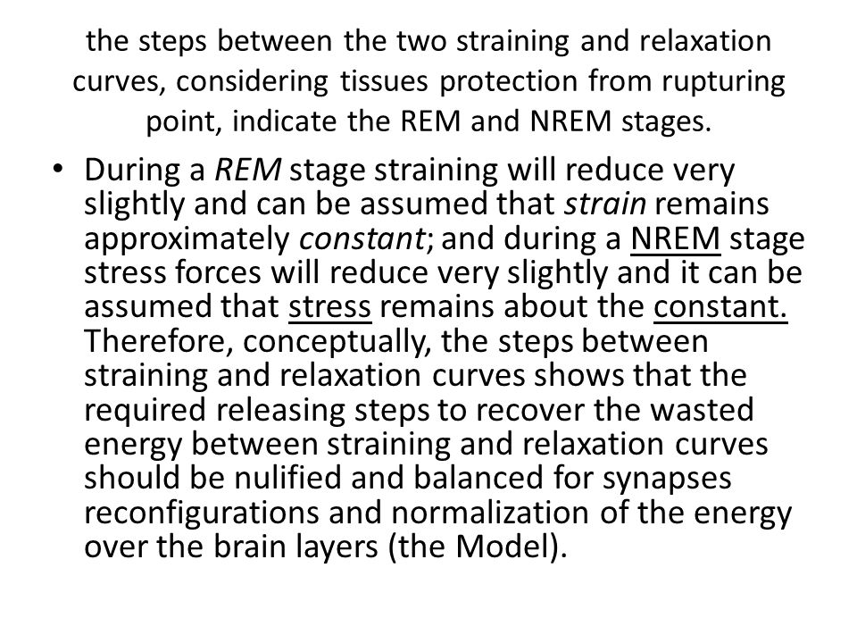the steps between the two straining and relaxation curves, considering tissues protection from rupturing point, indicate the REM and NREM stages.
