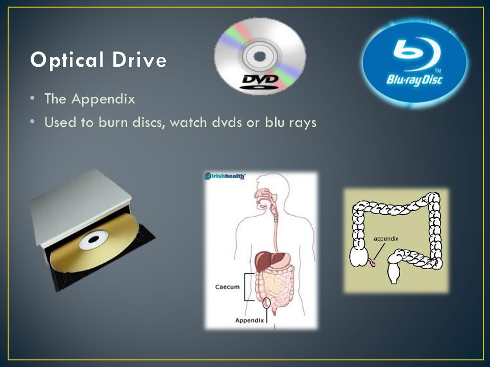 The Appendix Used to burn discs, watch dvds or blu rays