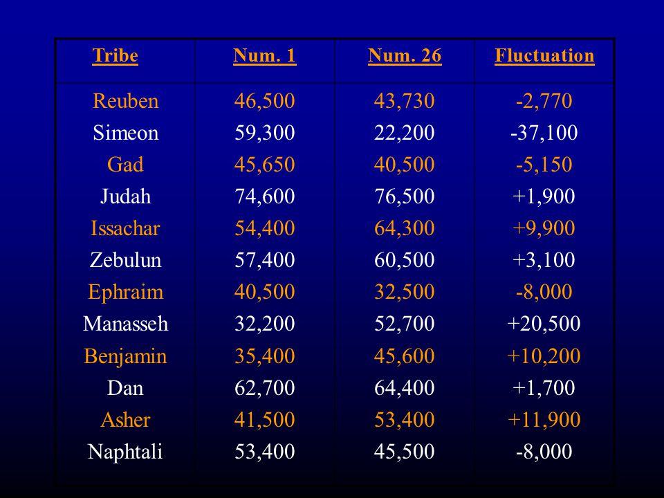 TribeNum. 1Num. 26Fluctuation Reuben Simeon Gad Judah Issachar Zebulun Ephraim Manasseh Benjamin Dan Asher Naphtali 46,500 59,300 45,650 74,600 54,400