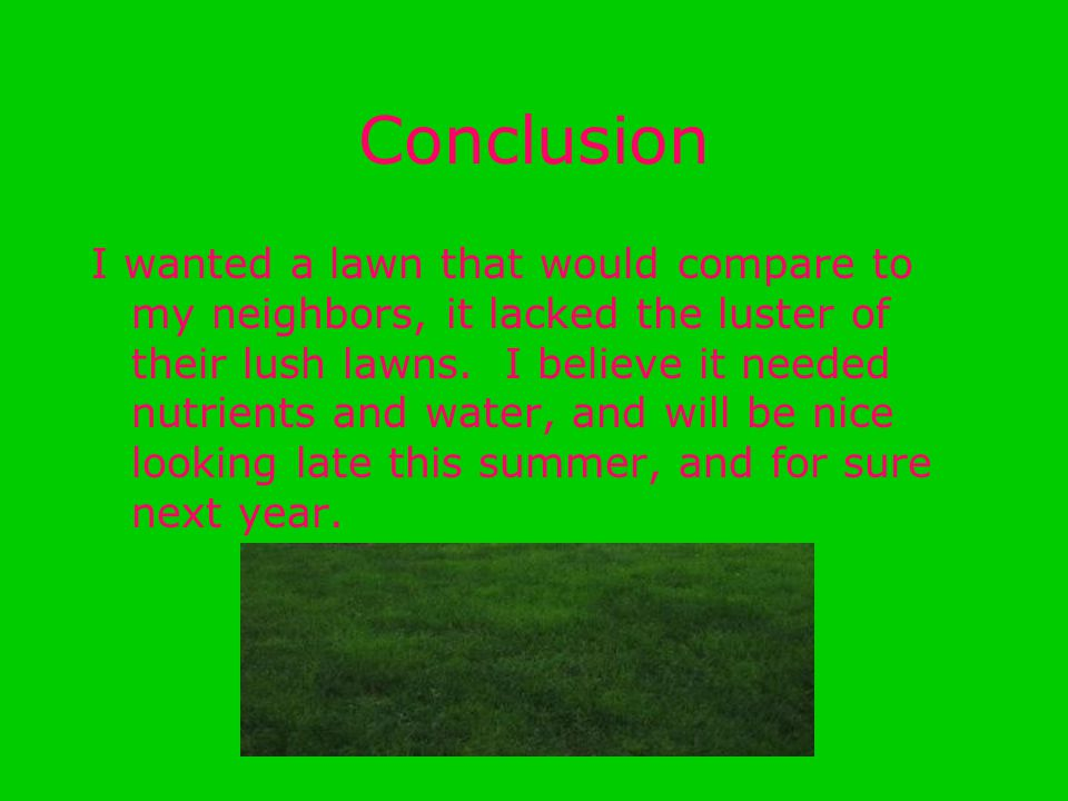 Conclusion I wanted a lawn that would compare to my neighbors, it lacked the luster of their lush lawns. I believe it needed nutrients and water, and