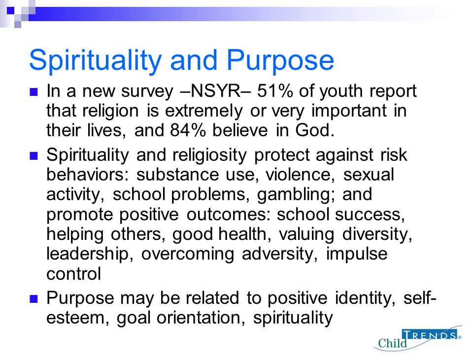 Spirituality and Purpose In a new survey –NSYR– 51% of youth report that religion is extremely or very important in their lives, and 84% believe in Go