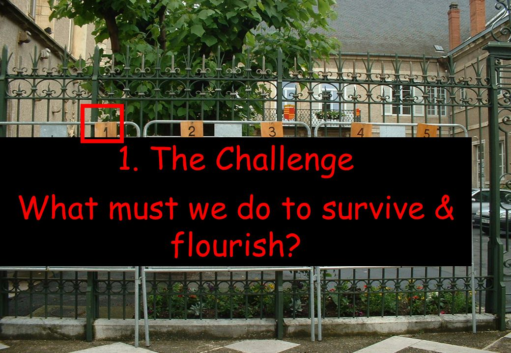1. The Challenge What must we do to survive & flourish?