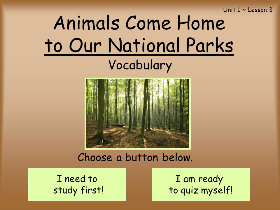 Animals Come Home to Our National Parks Vocabulary I need to study first! I am ready to quiz myself! Choose a button below. Unit 1 ~ Lesson 3
