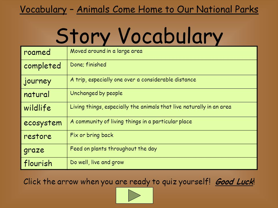 Story Vocabulary Vocabulary – Animals Come Home to Our National Parks Click the arrow when you are ready to quiz yourself.