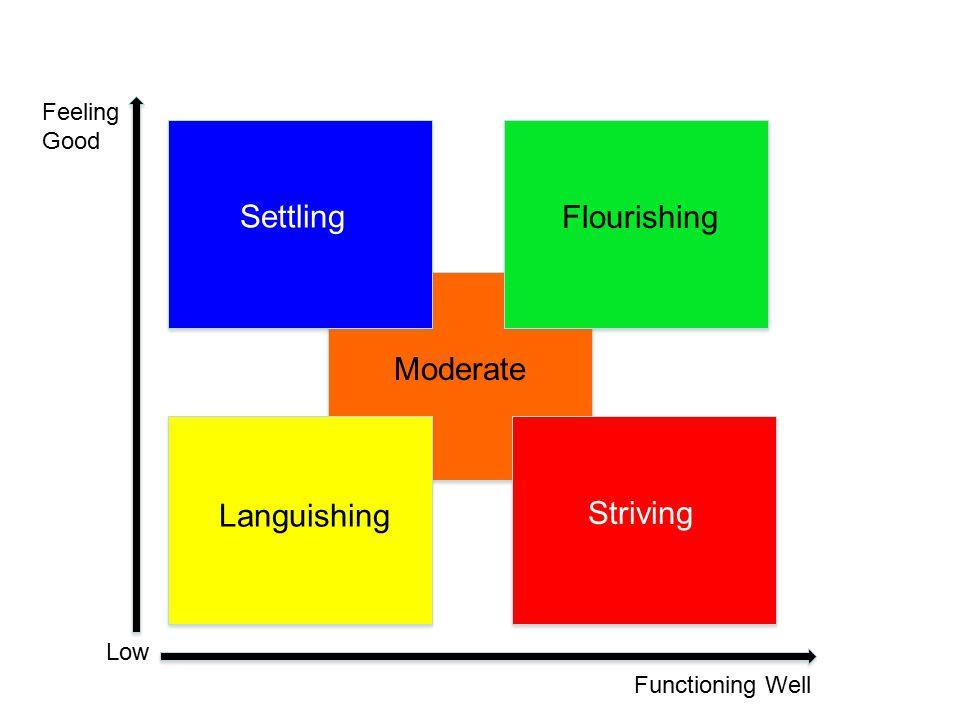 Feeling Good Functioning Well Hig h Low Moderate Striving Settling Languishing Flourishing