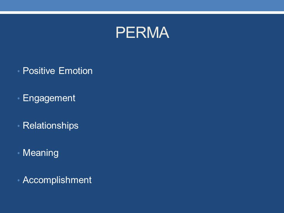 PERMA Positive Emotion Engagement Relationships Meaning Accomplishment