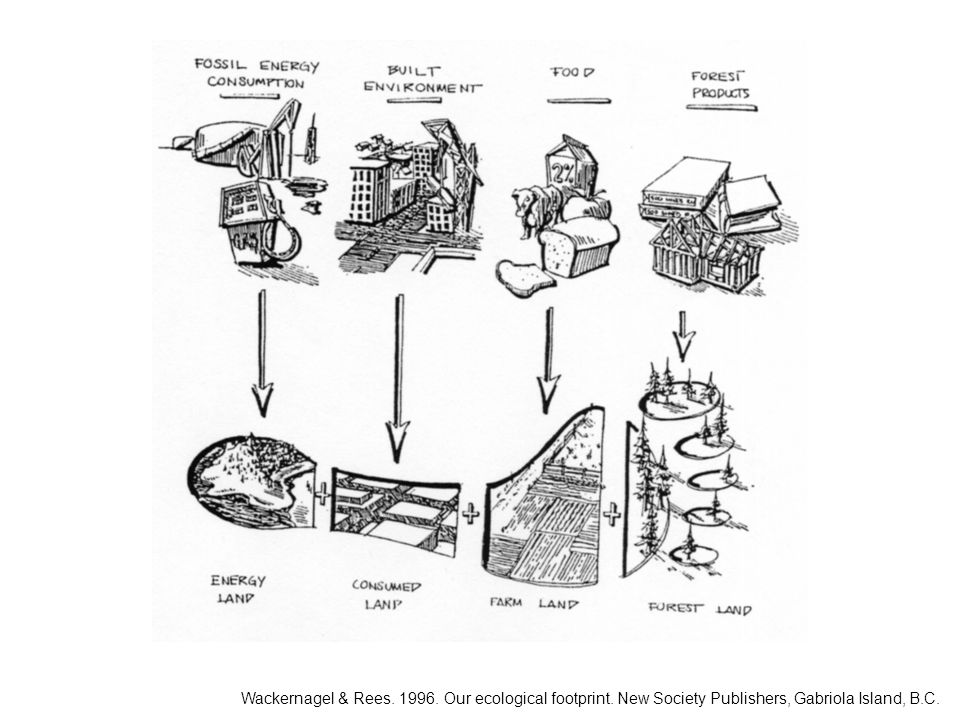 Wackernagel & Rees. 1996. Our ecological footprint. New Society Publishers, Gabriola Island, B.C.