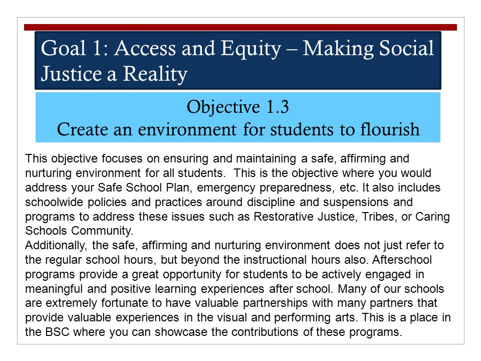 Goal 1: Access and Equity – Making Social Justice a Reality Objective 1.3 Create an environment for students to flourish This objective focuses on ens
