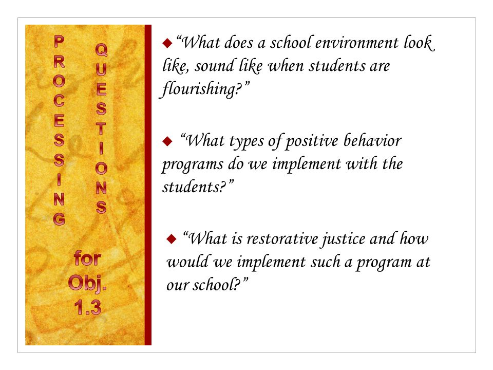 " ""What does a school environment look like, sound like when students are flourishing?""  ""What types of positive behavior programs do we implement wi"