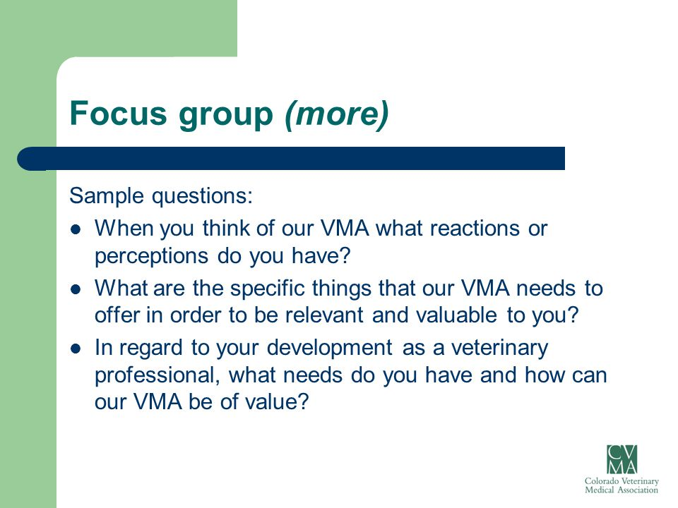 Focus group (more) Sample questions: When you think of our VMA what reactions or perceptions do you have? What are the specific things that our VMA ne