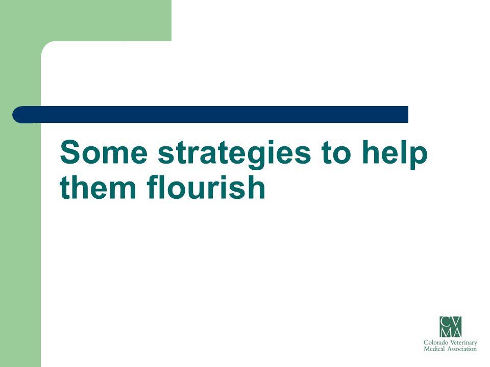 Some strategies to help them flourish