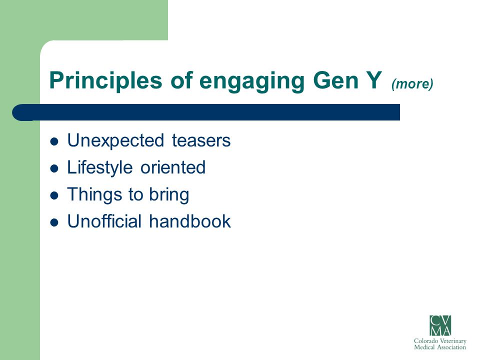 Principles of engaging Gen Y (more) Unexpected teasers Lifestyle oriented Things to bring Unofficial handbook