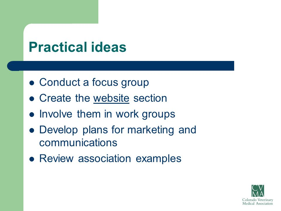 Practical ideas Conduct a focus group Create the website sectionwebsite Involve them in work groups Develop plans for marketing and communications Rev