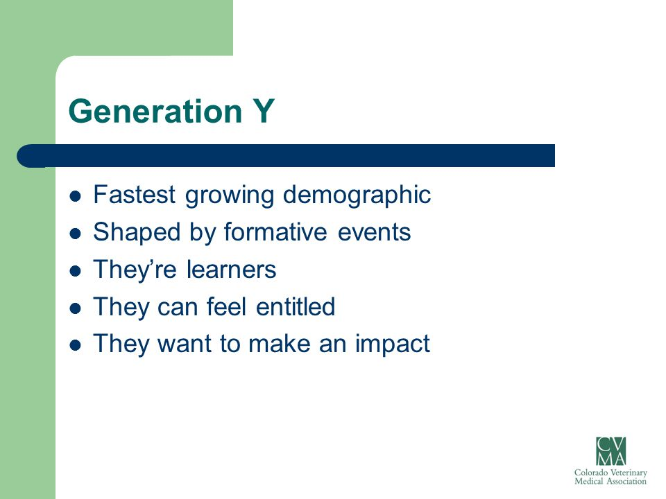 Generation Y (more) Don't expect lifetime employment – but they are loyal Tech dependent Value lifestyle and relationships above work