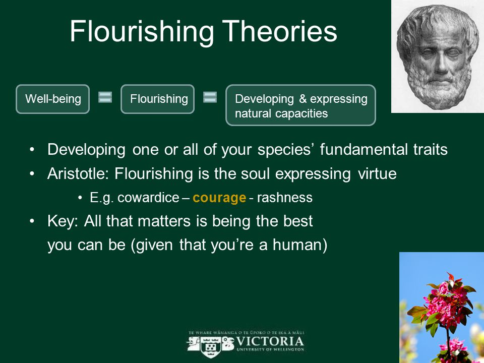 Flourishing Theories Developing one or all of your species' fundamental traits Aristotle: Flourishing is the soul expressing virtue E.g. cowardice – c