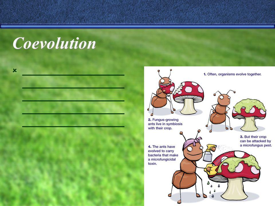 Coevolution  _________________ _________________ _________________ _________________ _________________