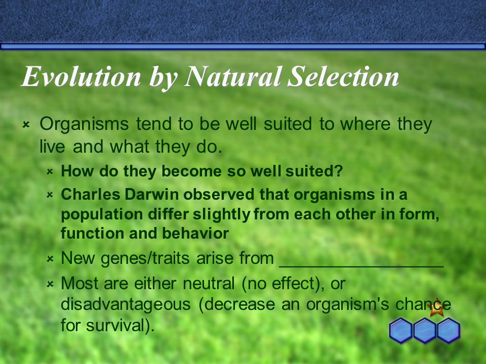 Natural Selection  Darwin's term to describe the __________ __________________________________ __________________________________  Over many generations natural selection causes the characteristics of populations to change.