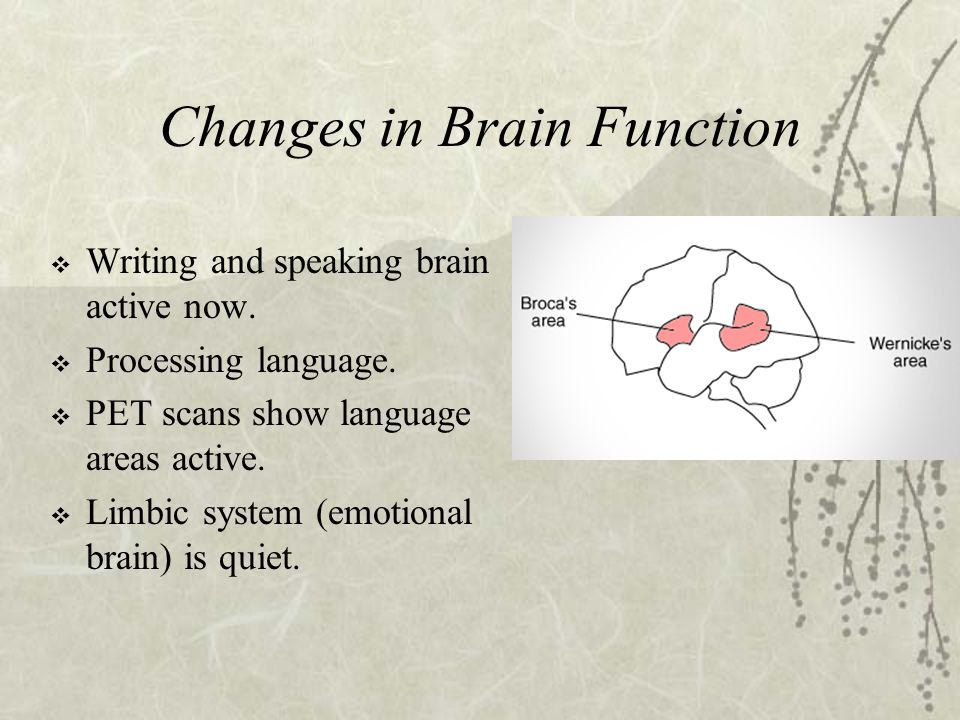 Changes in Brain Function  Writing and speaking brain active now.  Processing language.  PET scans show language areas active.  Limbic system (emo