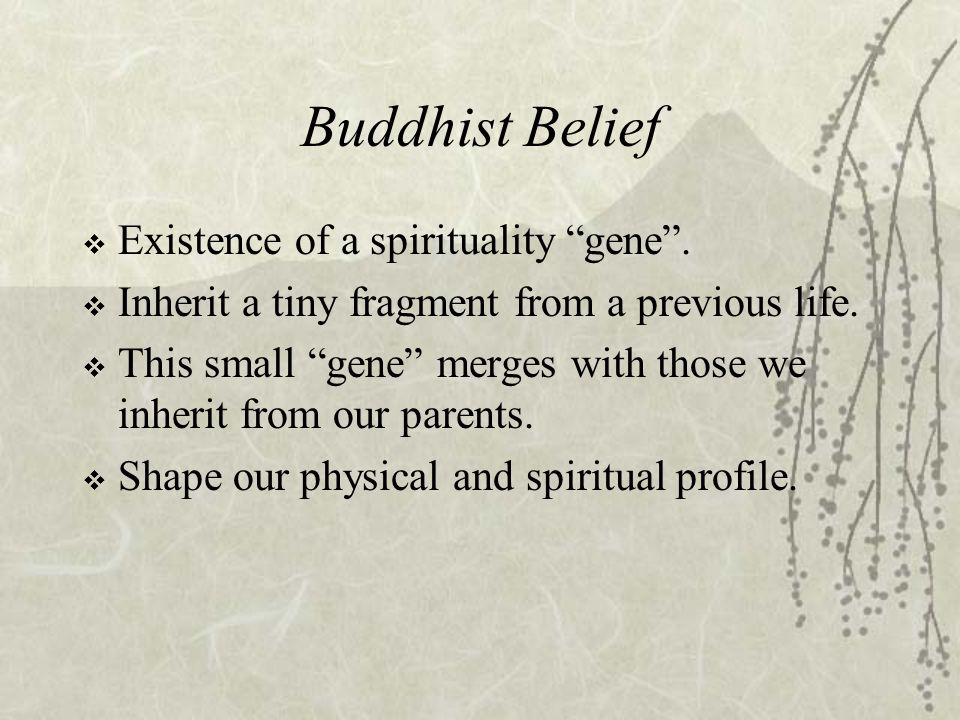 God Gene  Dean Hamer is a geneticist works at National Cancer Institute (NIH).