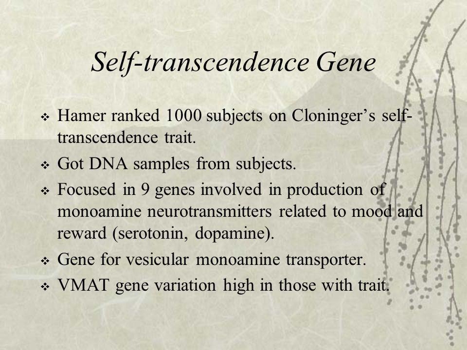 Self-transcendence Gene  Hamer ranked 1000 subjects on Cloninger's self- transcendence trait.  Got DNA samples from subjects.  Focused in 9 genes i