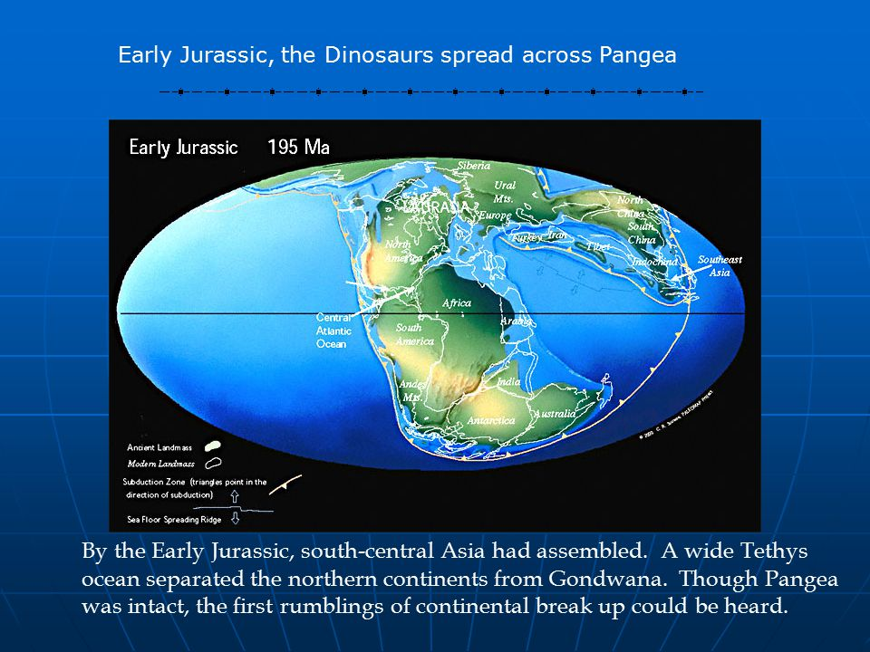 By the Early Jurassic, south-central Asia had assembled.