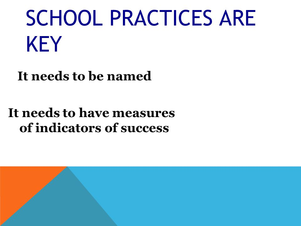 SCHOOL PRACTICES ARE KEY It needs to be named It needs to have measures of indicators of success