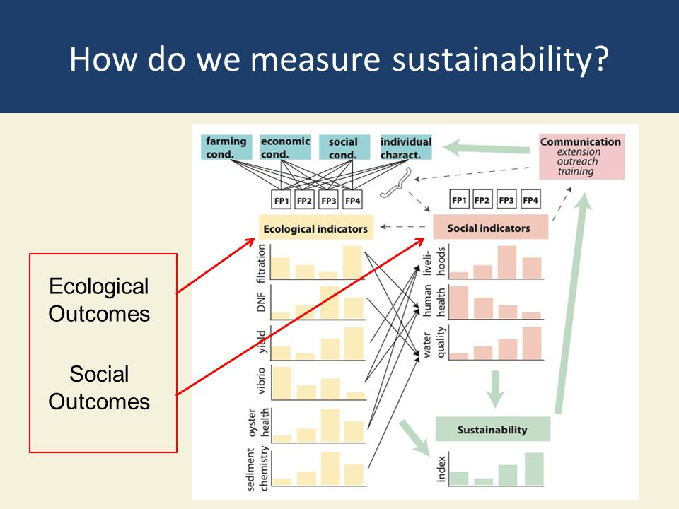 How do we measure sustainability? Ecological Outcomes Social Outcomes