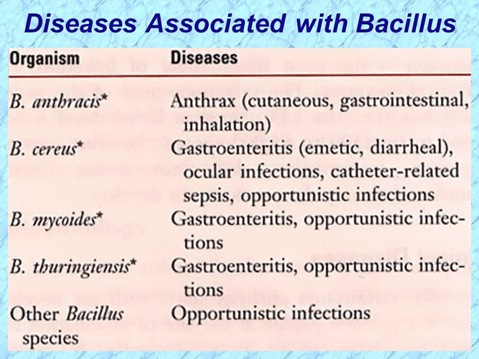 Diseases Associated with Bacillus
