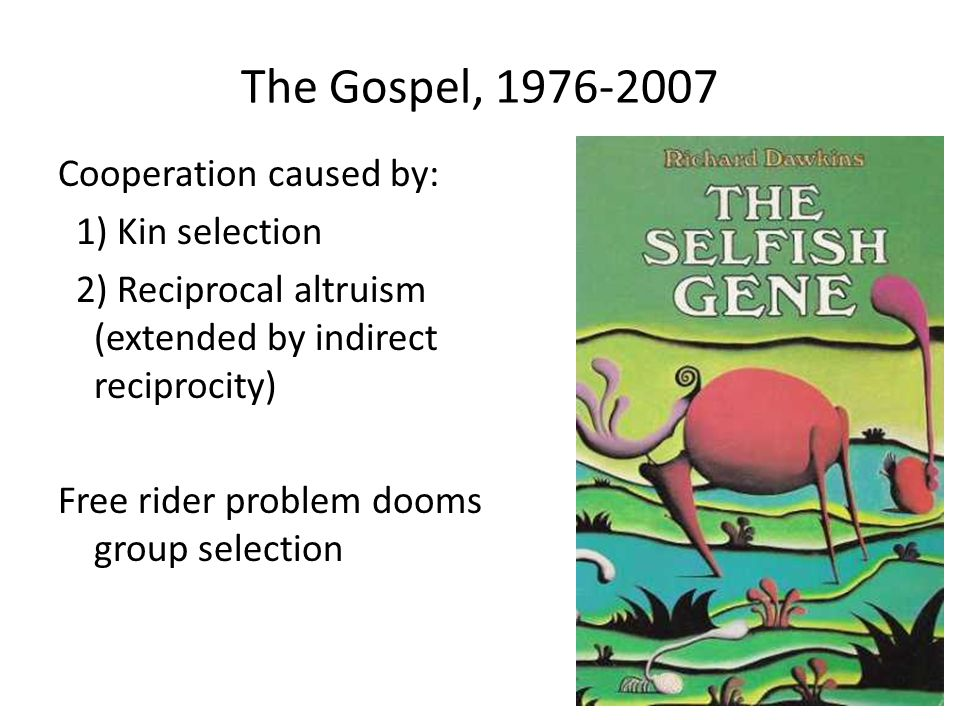 The Gospel, 1976-2007 Cooperation caused by: 1) Kin selection 2) Reciprocal altruism (extended by indirect reciprocity) Free rider problem dooms group selection