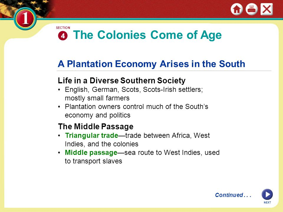 NEXT A Plantation Economy Arises in the South Life in a Diverse Southern Society English, German, Scots, Scots-Irish settlers; mostly small farmers Pl