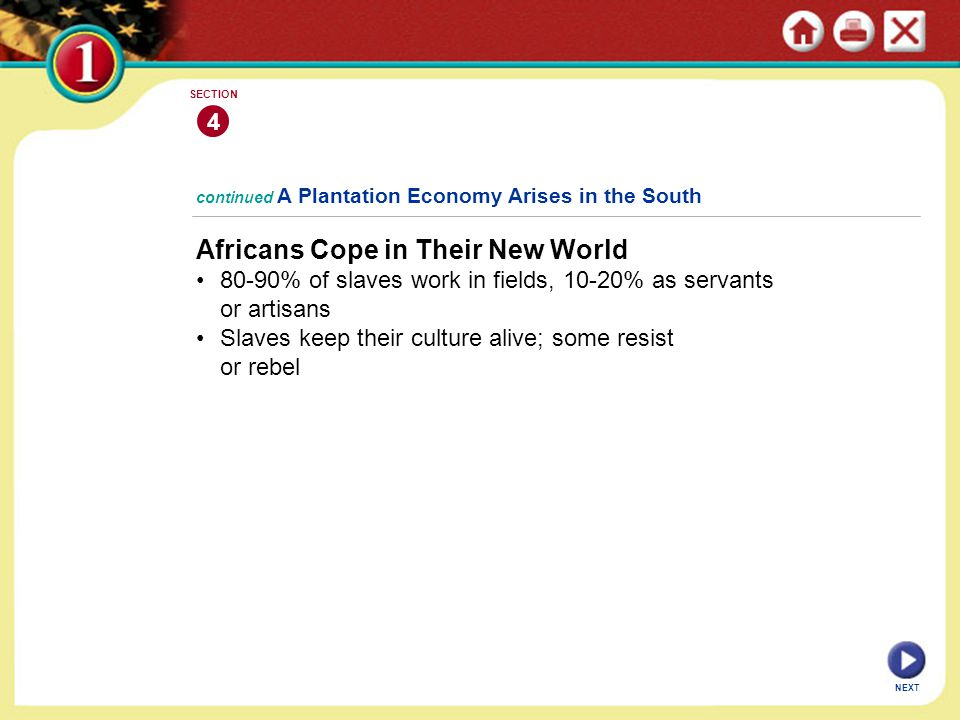 NEXT 4 SECTION Africans Cope in Their New World 80-90% of slaves work in fields, 10-20% as servants or artisans Slaves keep their culture alive; some