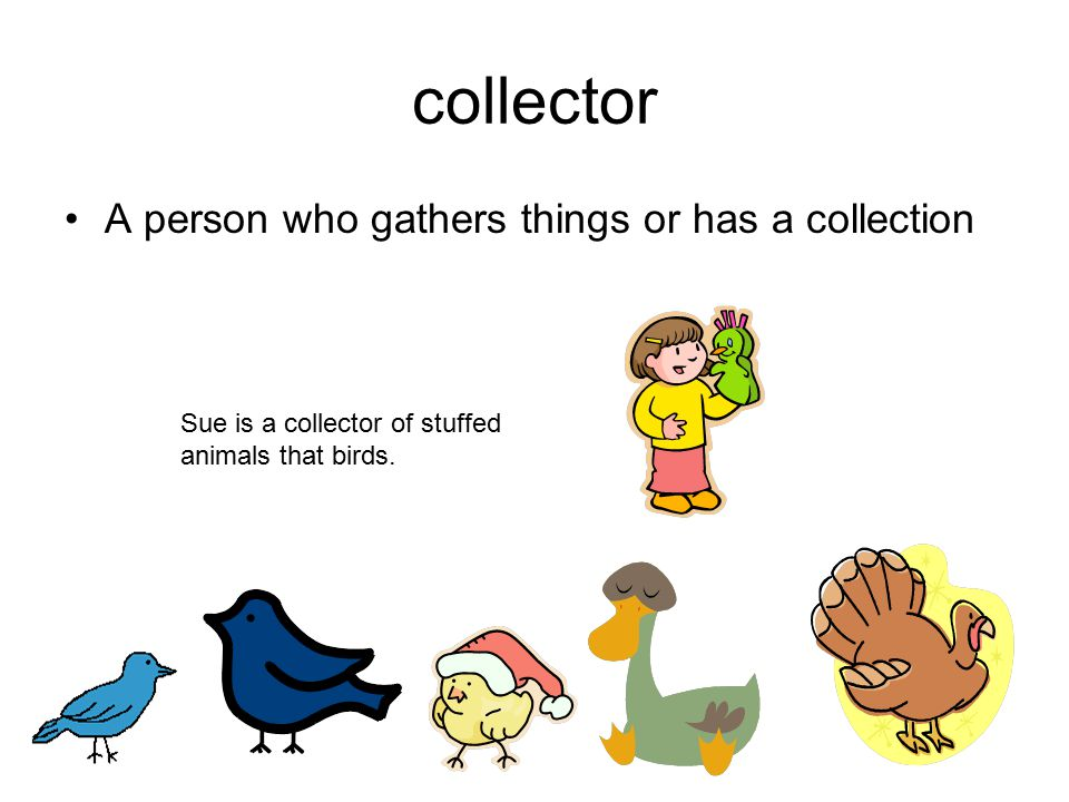 collector A person who gathers things or has a collection Sue is a collector of stuffed animals that birds.