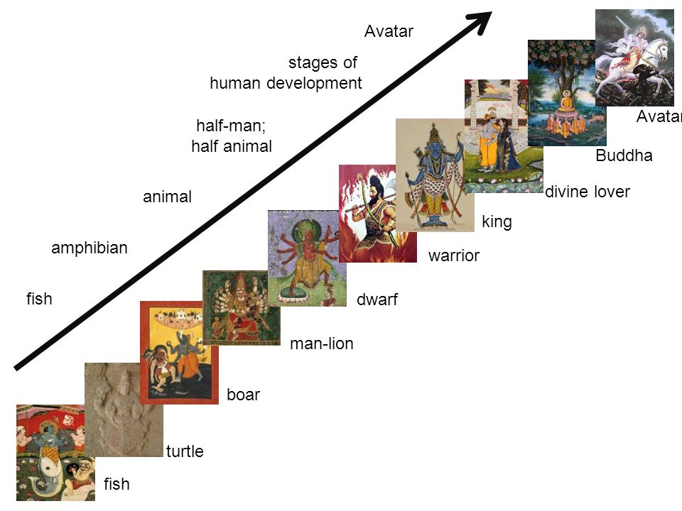 fish turtle boar man-lion dwarf warrior king divine lover Buddha Avatar fish amphibian animal half-man; half animal stages of human development Avatar