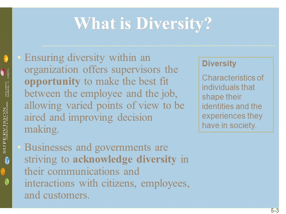 5-3 What is Diversity.