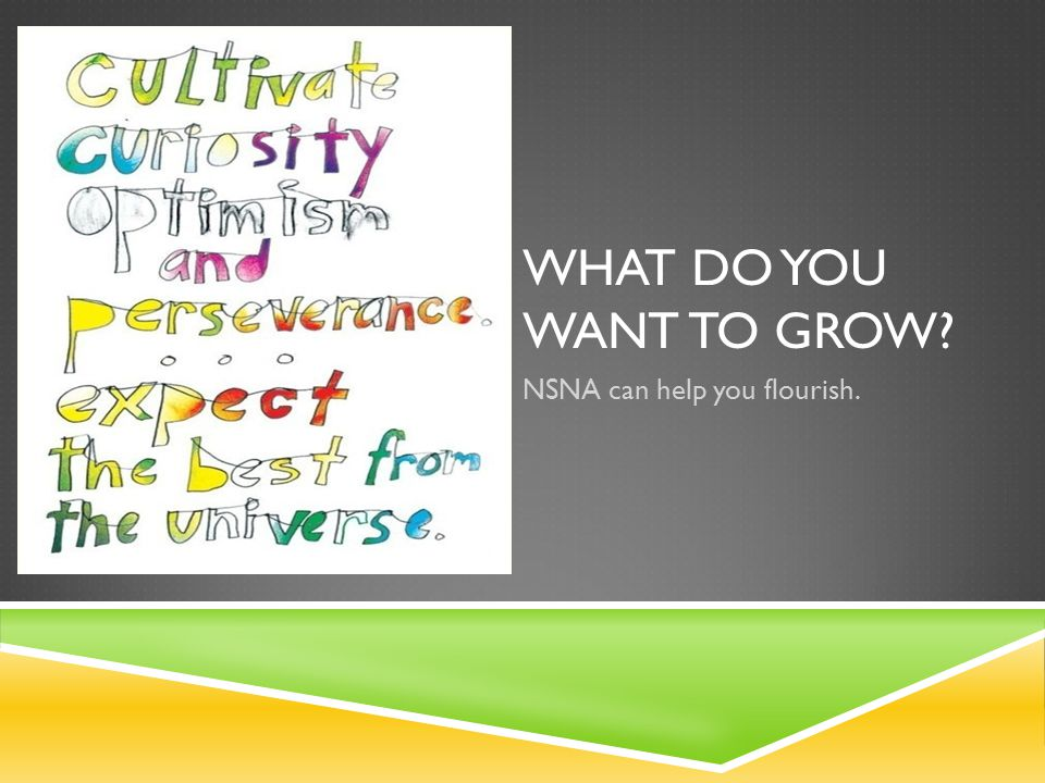 WHAT DO YOU WANT TO GROW NSNA can help you flourish.