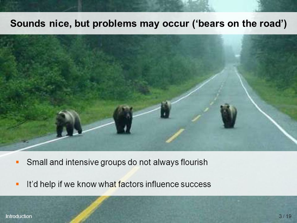University of Twente Initiative for Purchasing Studies (UTIPS) 4/16 Sounds nice, but problems may occur ('bears on the road')  Small and intensive groups do not always flourish  It'd help if we know what factors influence success Introduction3 / 19