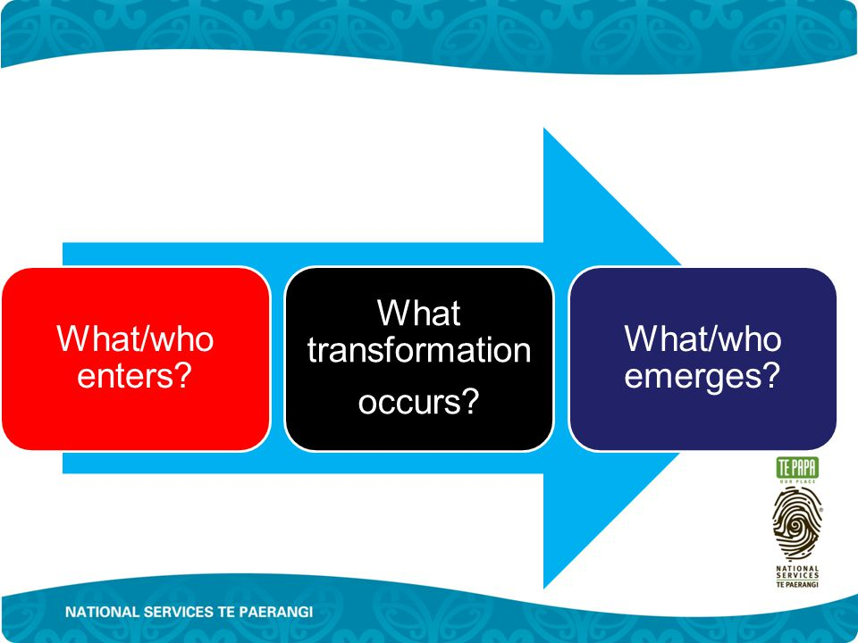 What/who enters What transformation occurs What/who emerges