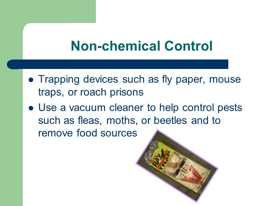Non-chemical Control Trapping devices such as fly paper, mouse traps, or roach prisons Use a vacuum cleaner to help control pests such as fleas, moths