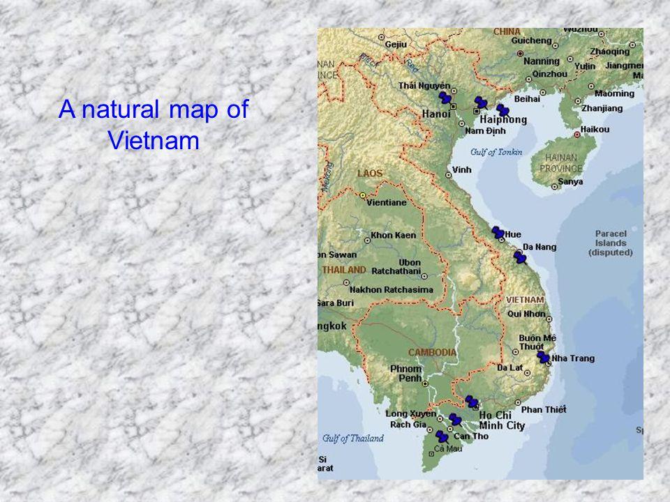 A natural map of Vietnam