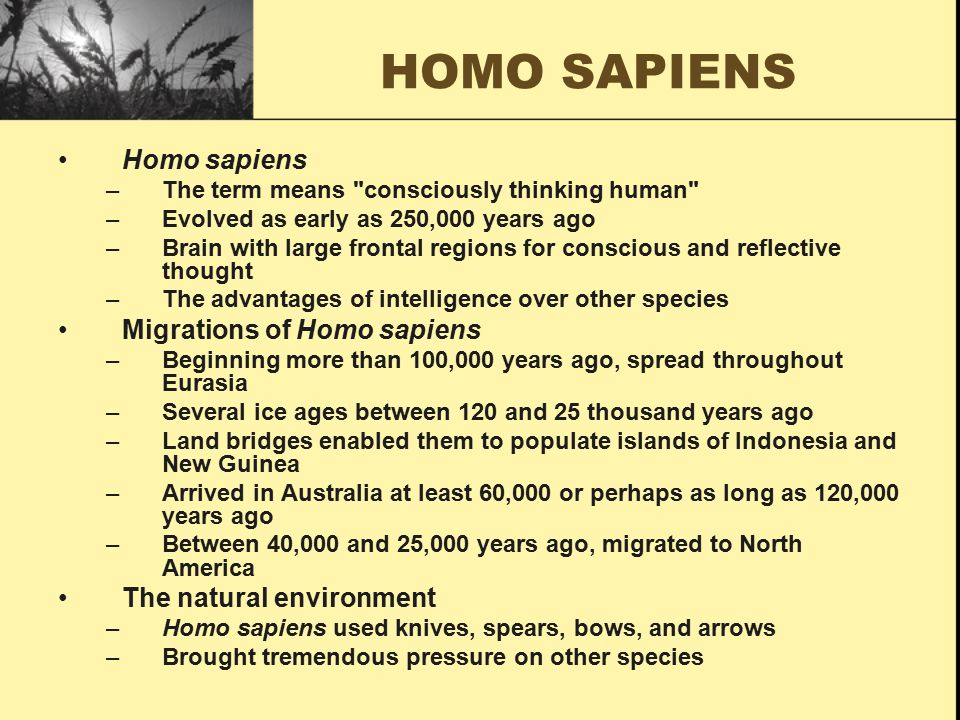 PALEOLITHIC AGE Homo sapiens –The term means consciously thinking human –Evolved as early as 250,000 years ago –Brain with large frontal regions for conscious and reflective thought –The advantages of intelligence over other species Migrations of Homo sapiens –Beginning more than 100,000 years ago, spread throughout Eurasia –Several ice ages between 120 and 25 thousand years ago –Land bridges enabled them to populate Indonesia and New Guinea –Arrived in Australia between 60,000 and 120,000 years ago –Between 40,000 and 25,000 years ago, migrated to North America The natural environment –Homo sapiens used knives, spears, bows, and arrows –Brought tremendous pressure on other species